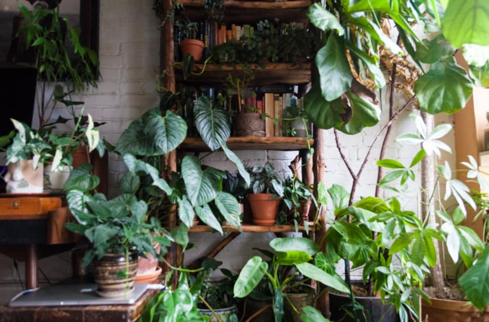 40 Spring Decor Ideas That Will Instantly Freshen Up the Dullest Indoor Space
