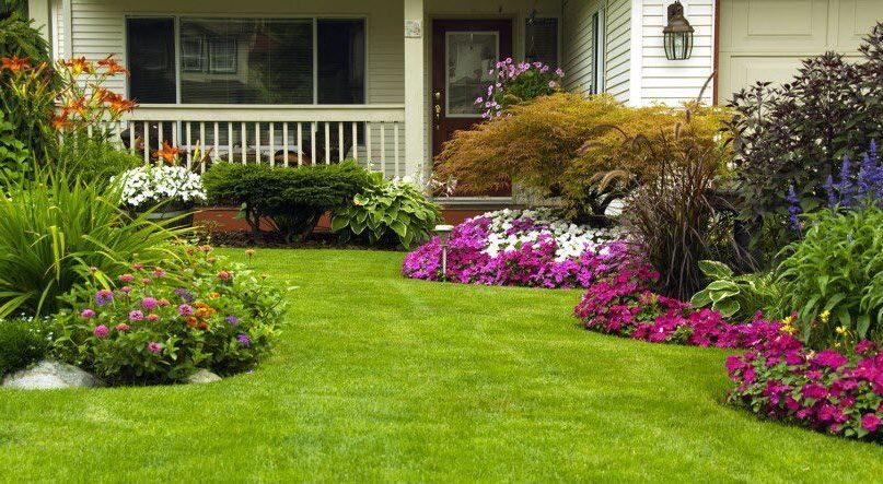 35 Summer Landscaping Tips for the Best Lawn