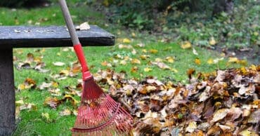 How to Get the Lawn and Garden Ready for Winter