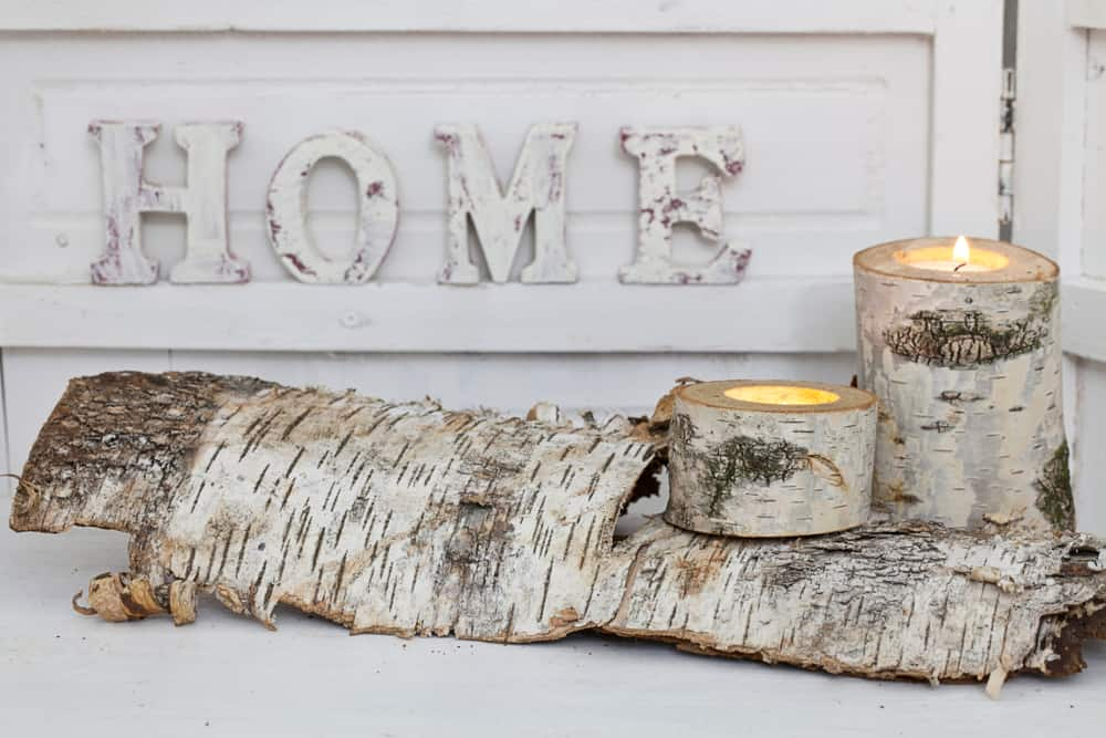 8.Candle Holders Made of Birch Logs
