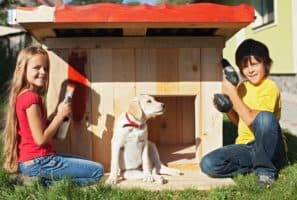 How to Build a DIY Dog House the Family Pet Won't Want to Leave
