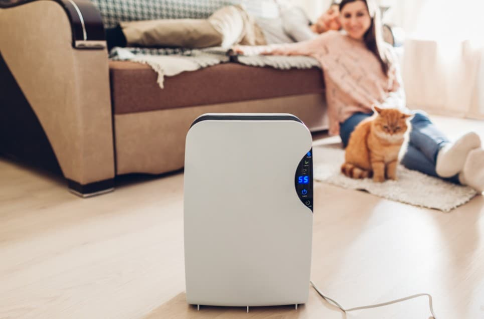 20 Air Purifiers Actually Worth the Money